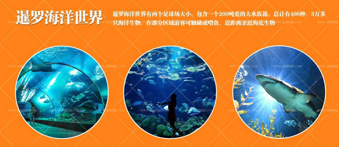 德国啤酒屋 海洋世界 78层自助餐 深圳或香港往返 全程入住五晚当地五